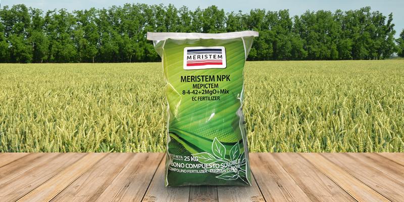 Листовая подкормка озимой пшеницы - внекорневая подкормка озимой пшеницы весной, осенью || Удобрения для озимых зерновых культур