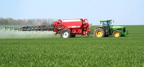 Яке добриво краще для пшениці